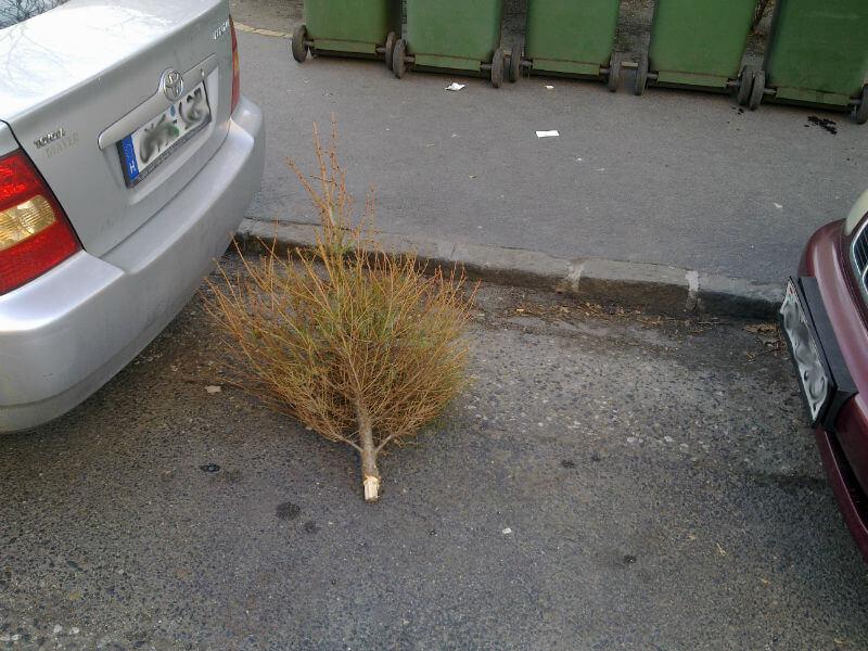 Karácsony után - jozsefattilalakotelep.hu